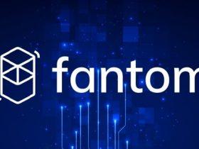 Fantom Coin Nasıl Alınır