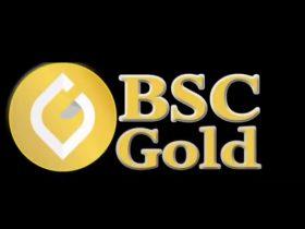 BSCGold Coin Nereden Alınır