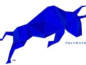 poly coin nedir