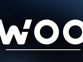 woo coin nedir
